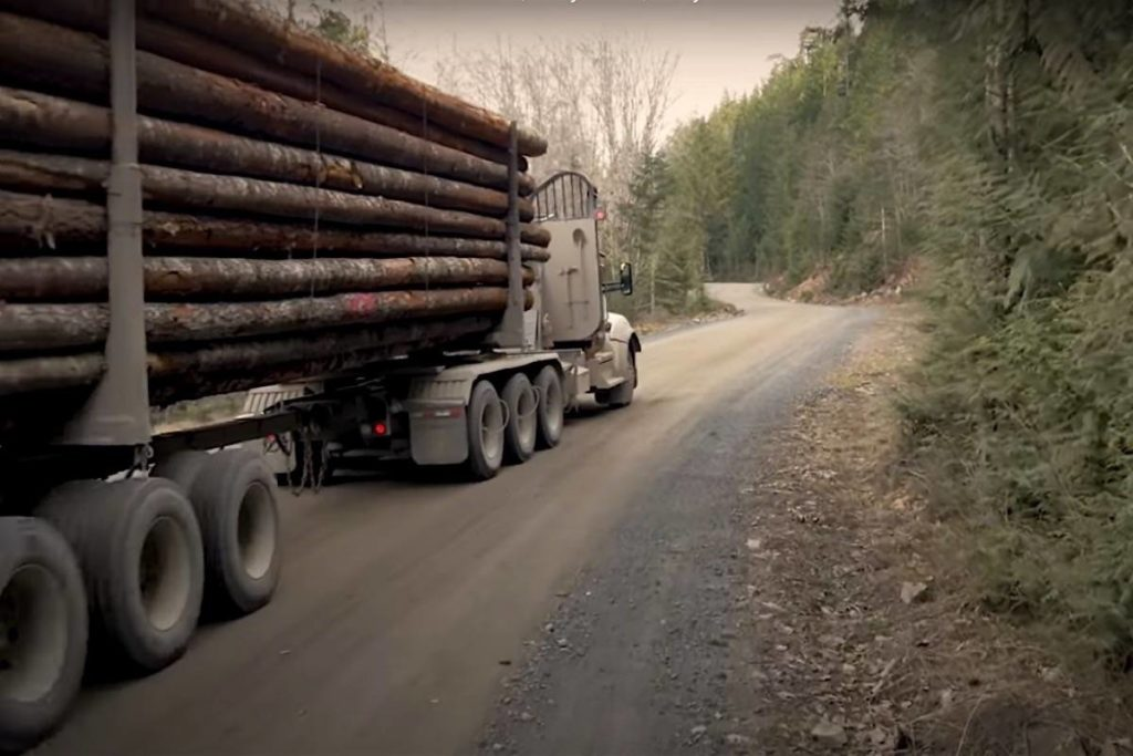 Planning some B.C. wilderness fishing? Don't catch a log truck - Langley Advance Times