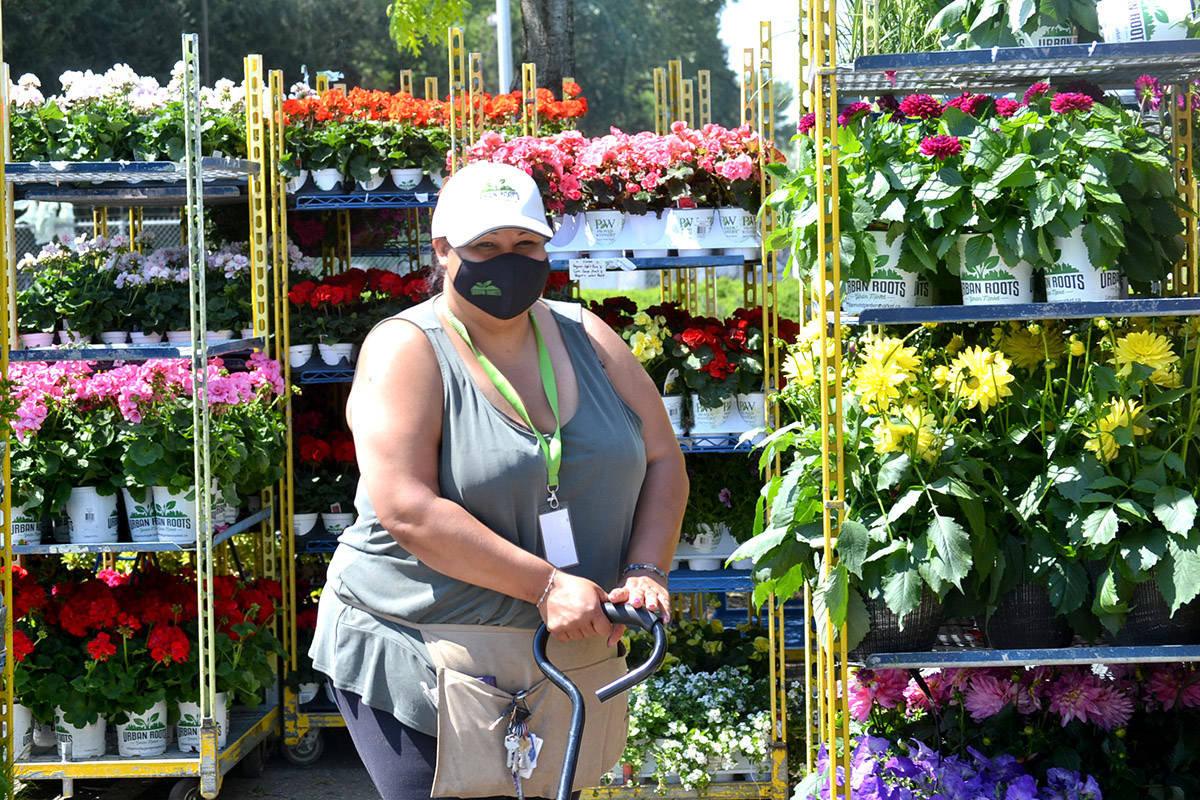 Staff stock the shelves at Urban Roots pop-up plant market in Langley, one of seven in the Lower Mainland. (Ryan Uytdewilligen/Aldergrove Star)
