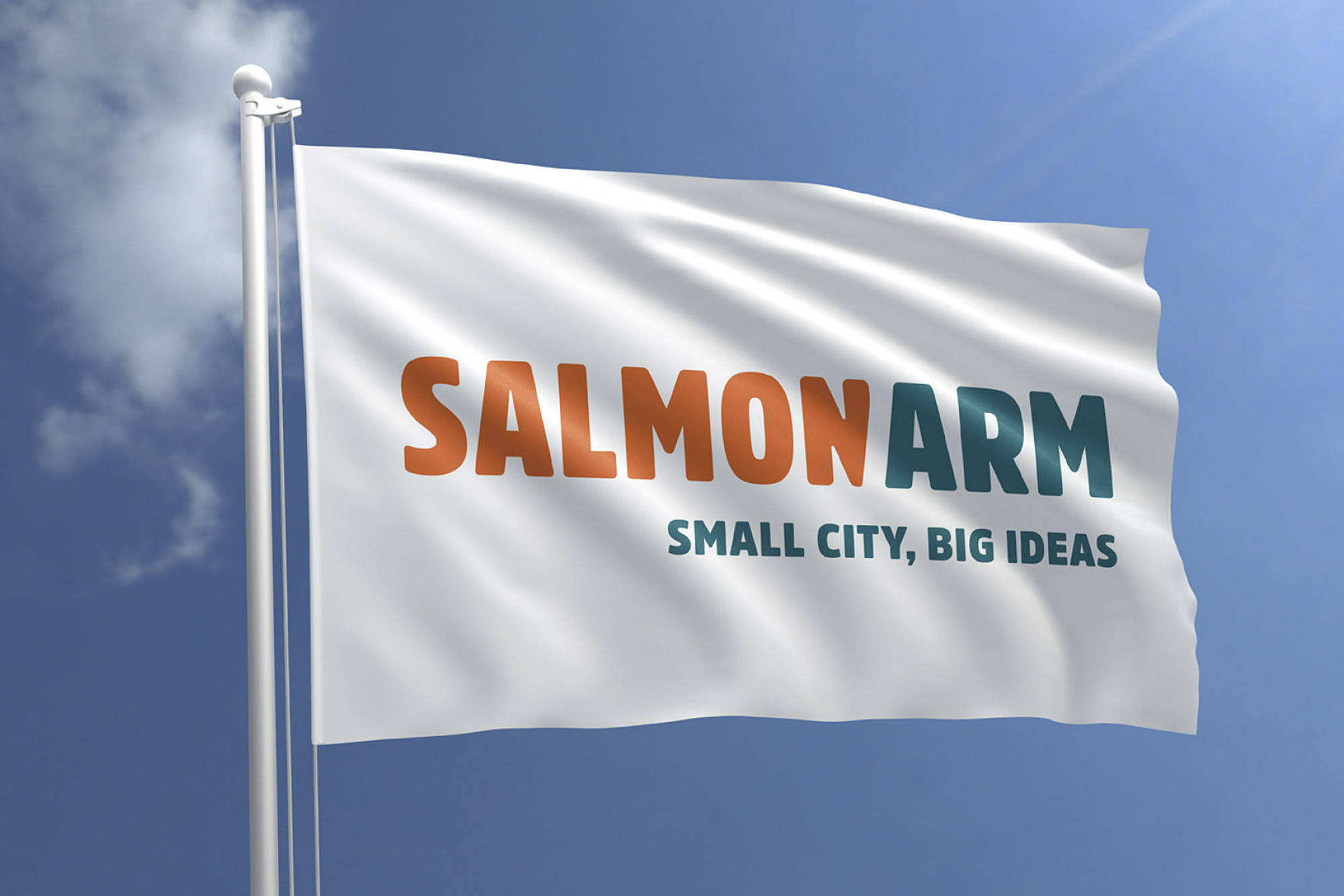 The majority of city council votes in favour of this design for a new Salmon Arm flag on Monday, May 10, 2021. (City of Salmon Arm image)