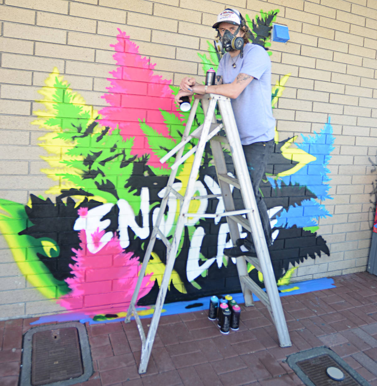 A new mural was painted on a wall in Salt Lane May 14, 2021, by Fort Langley artist Alex Stewart. (Heather Colpitts/Langley Advance Times)