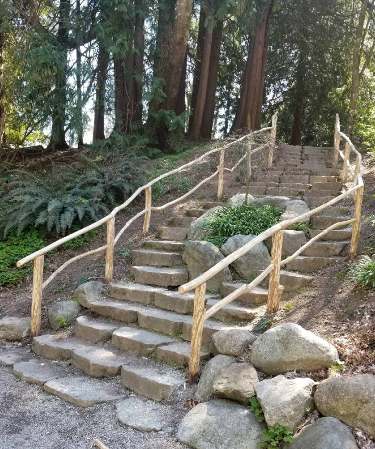 A fallen tree in Langley City's City park has been transformed by municipal workers into a rustic railing in Sendall Gardens (Special to Langley Advance Times)