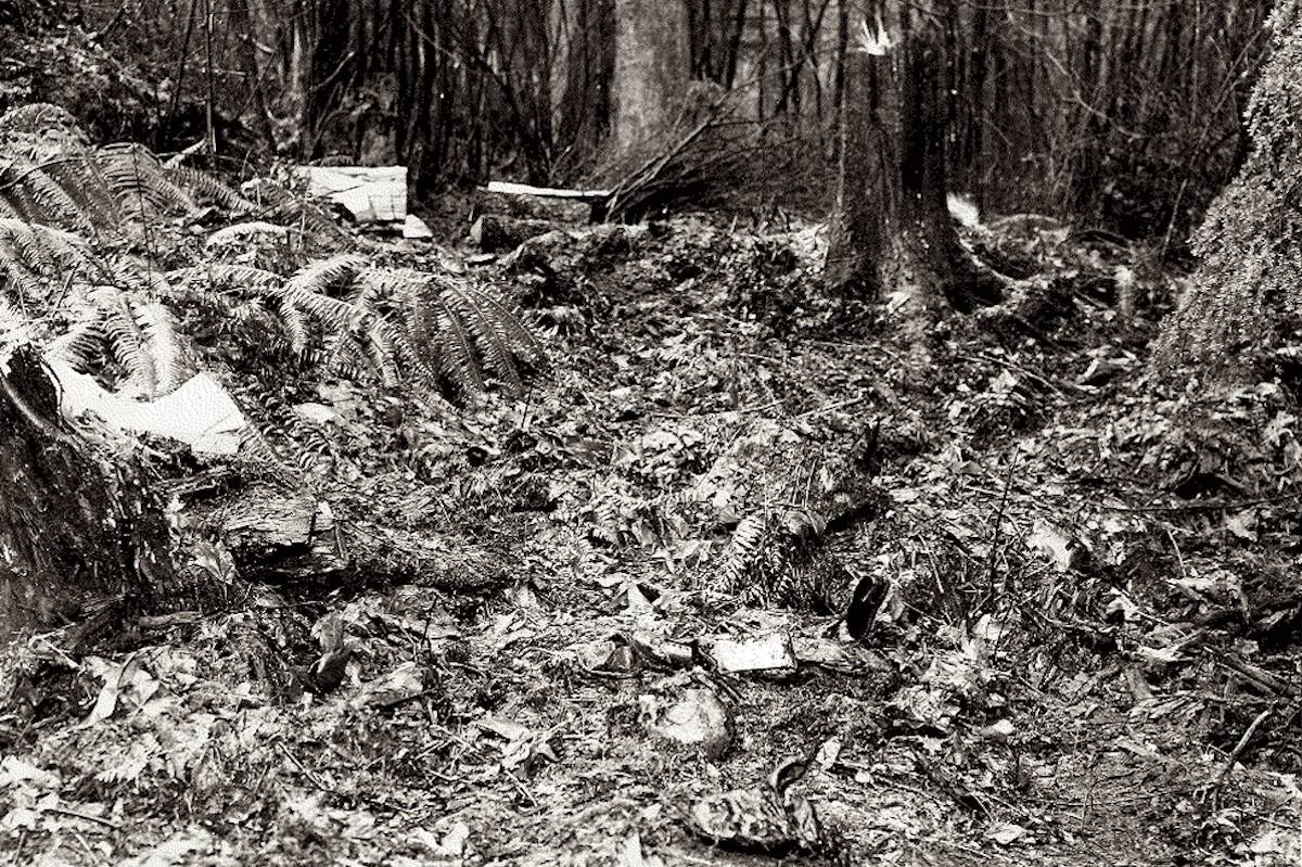 The Stanley Park crime scene, pictured in 1953. (Vancouver Police Department)
