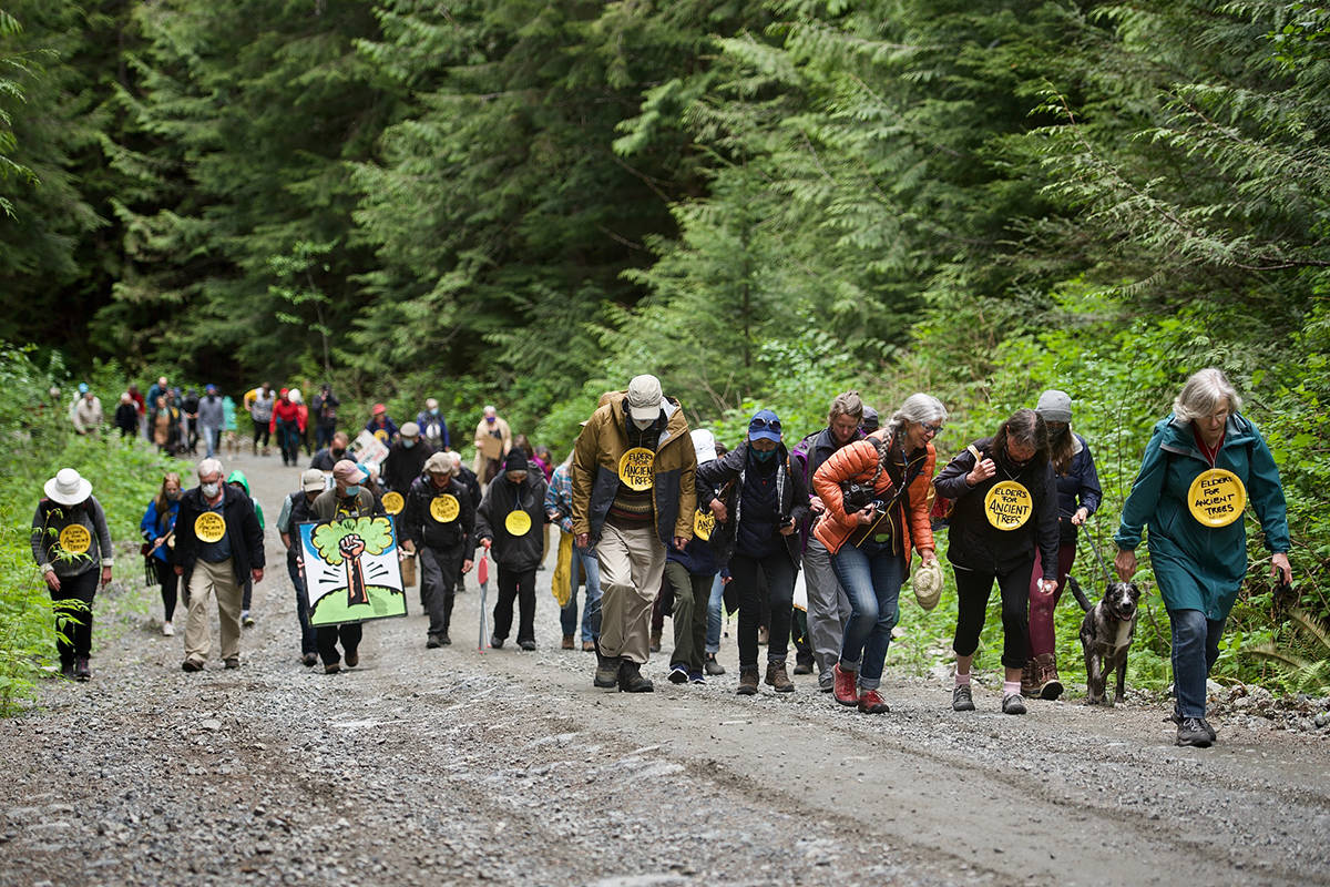Seniors went to Fairy Creek to relieve young people who have been protesting logging in the area. (Submitted/Marnie Recker)