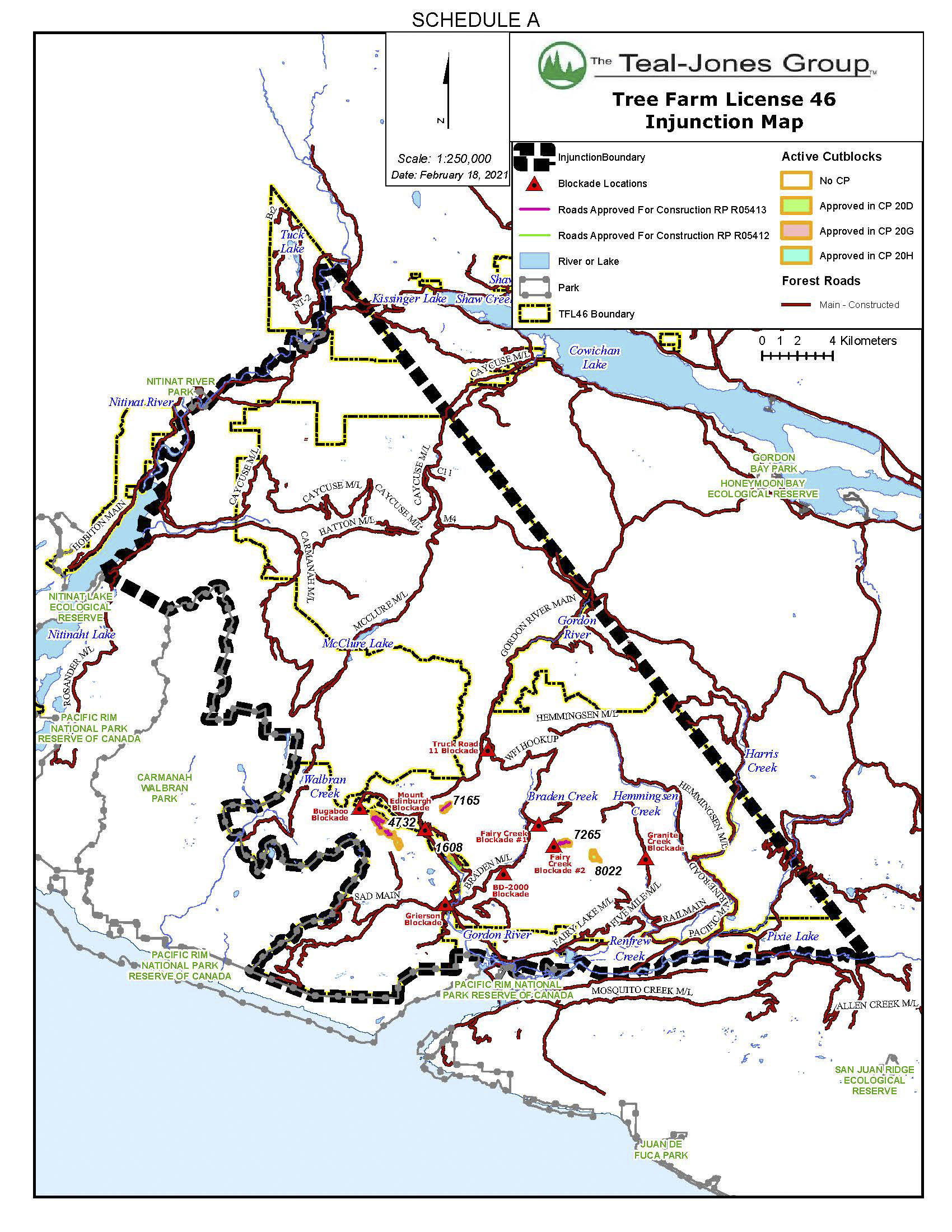 This map, provided by the RCMP, shows the boundaries of Tree Farm Licence 46 and the BC Supreme Court injunction. (RCMP handout)