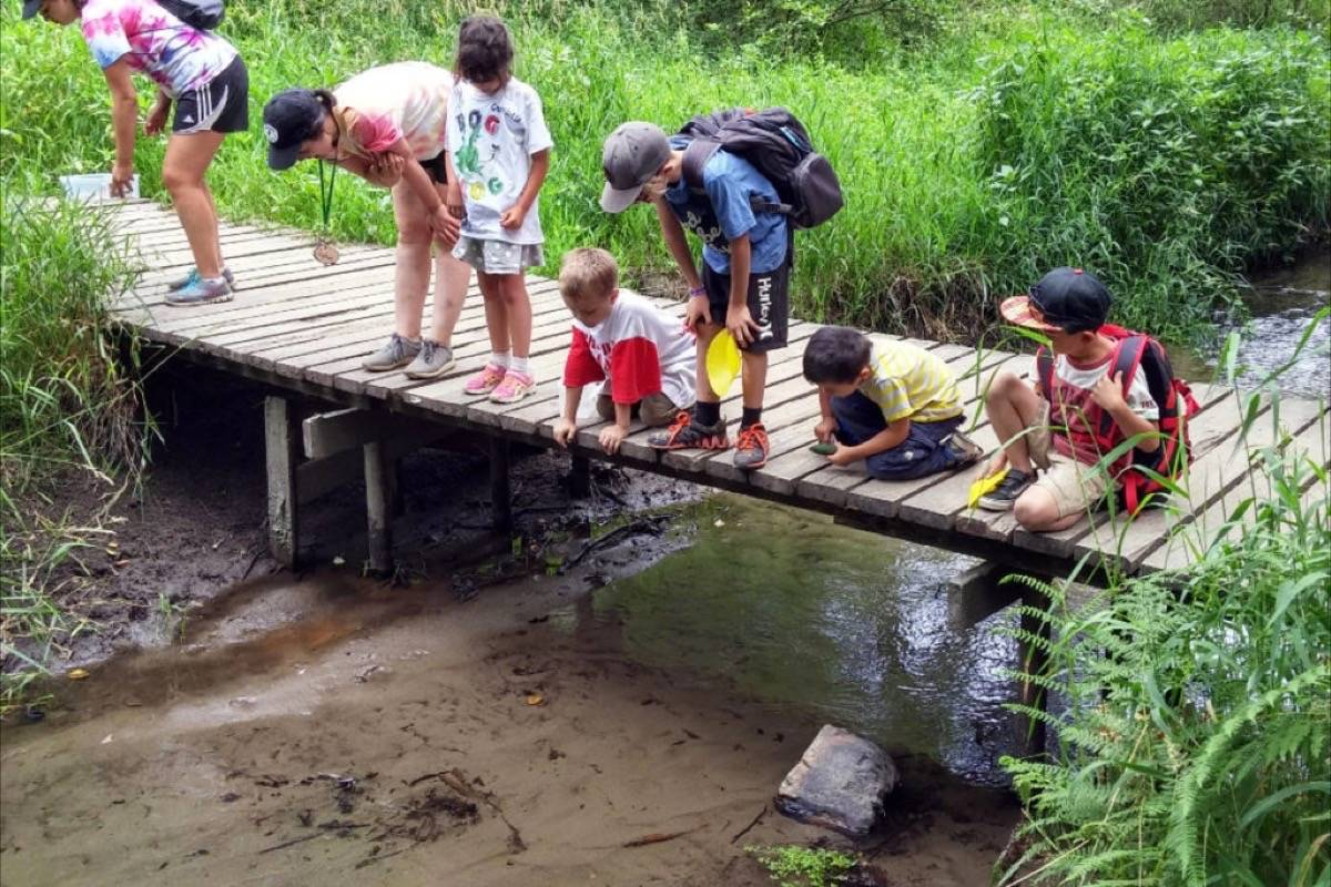 Children examine aquatic life in Delta's Burns Bog as part of a day camp in 2018. A return to overnight camps is coming this summer, B.C. public health officials say. (Burns Bog Society/Surrey NowLeader)
