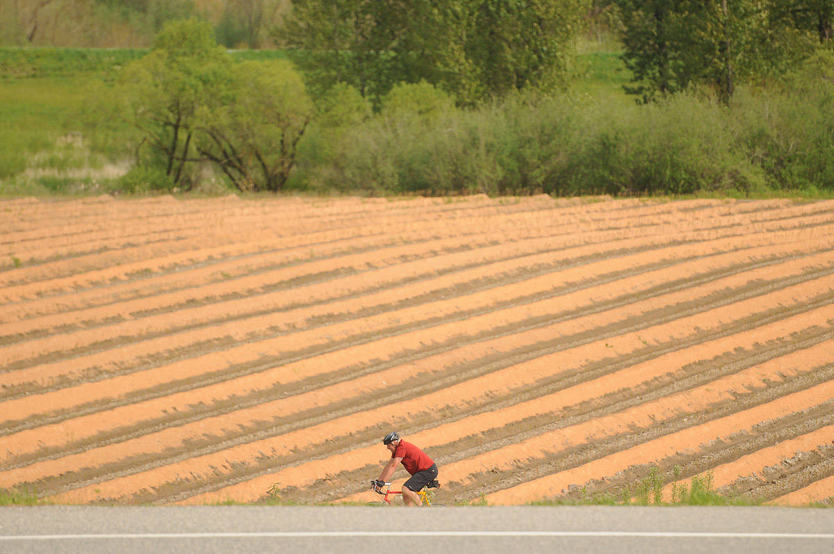 A cyclist heads west on Industrial Way in Chilliwack soaking up the springtime sun on Thursday, April 29, 2021. Thursday, June 3, 2021 is World Bicycle Day. (Jenna Hauck/ Chilliwack Progress)