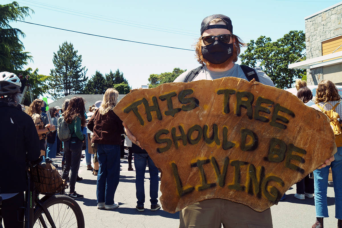 Brentwood Bay resident Lachlan Palmer takes his message protesting old-growth logging to Premier John Horgan's constituency office in Langford. (Rick Stiebe/News Staff)