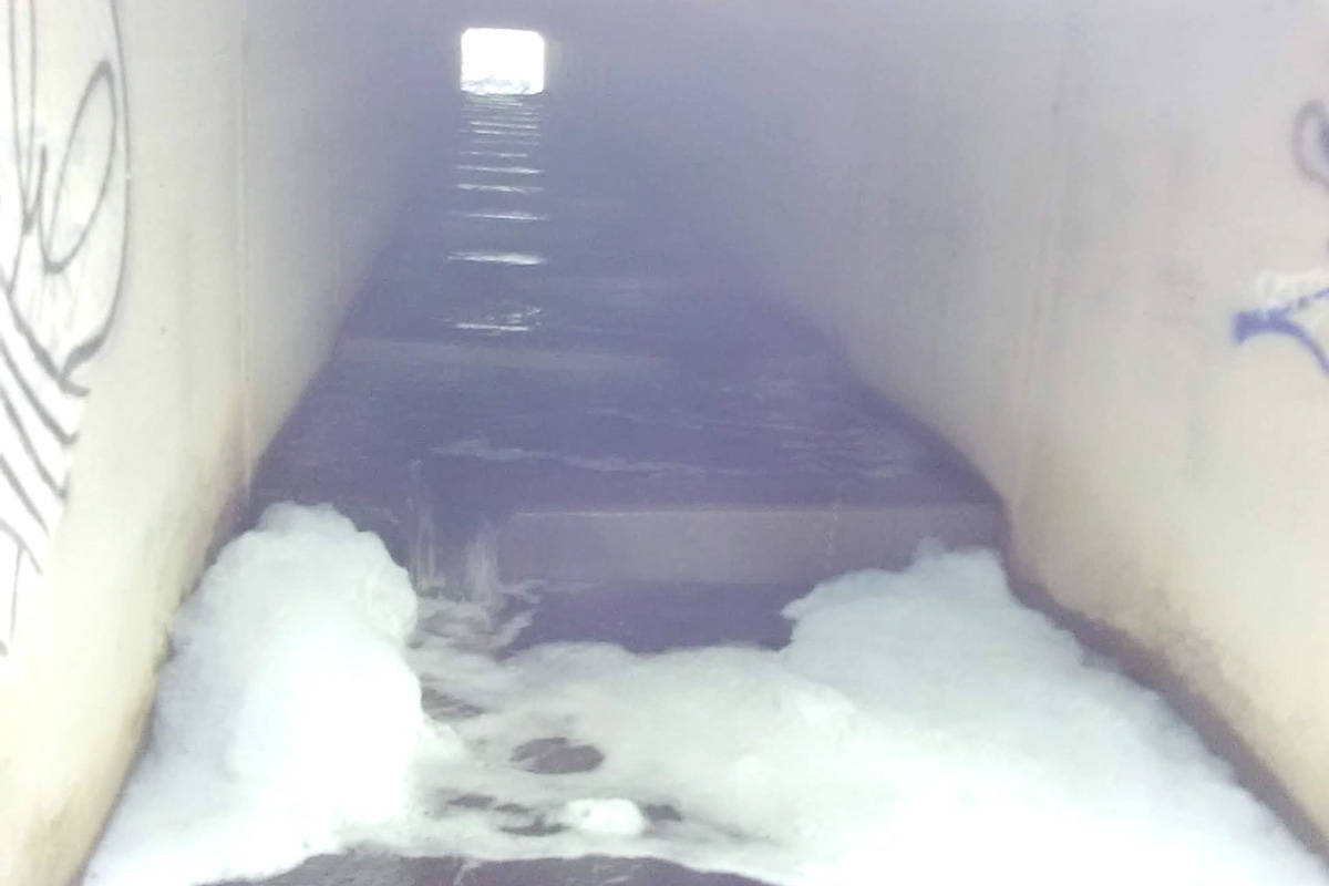 Foam in the 86th Avenue culvert on April 20, 2021. The Yorkson Watershed Enhancement Society said a school of coho fry were found alive just down stream. (Yorkson Watershed Enhancement Society Facebook)