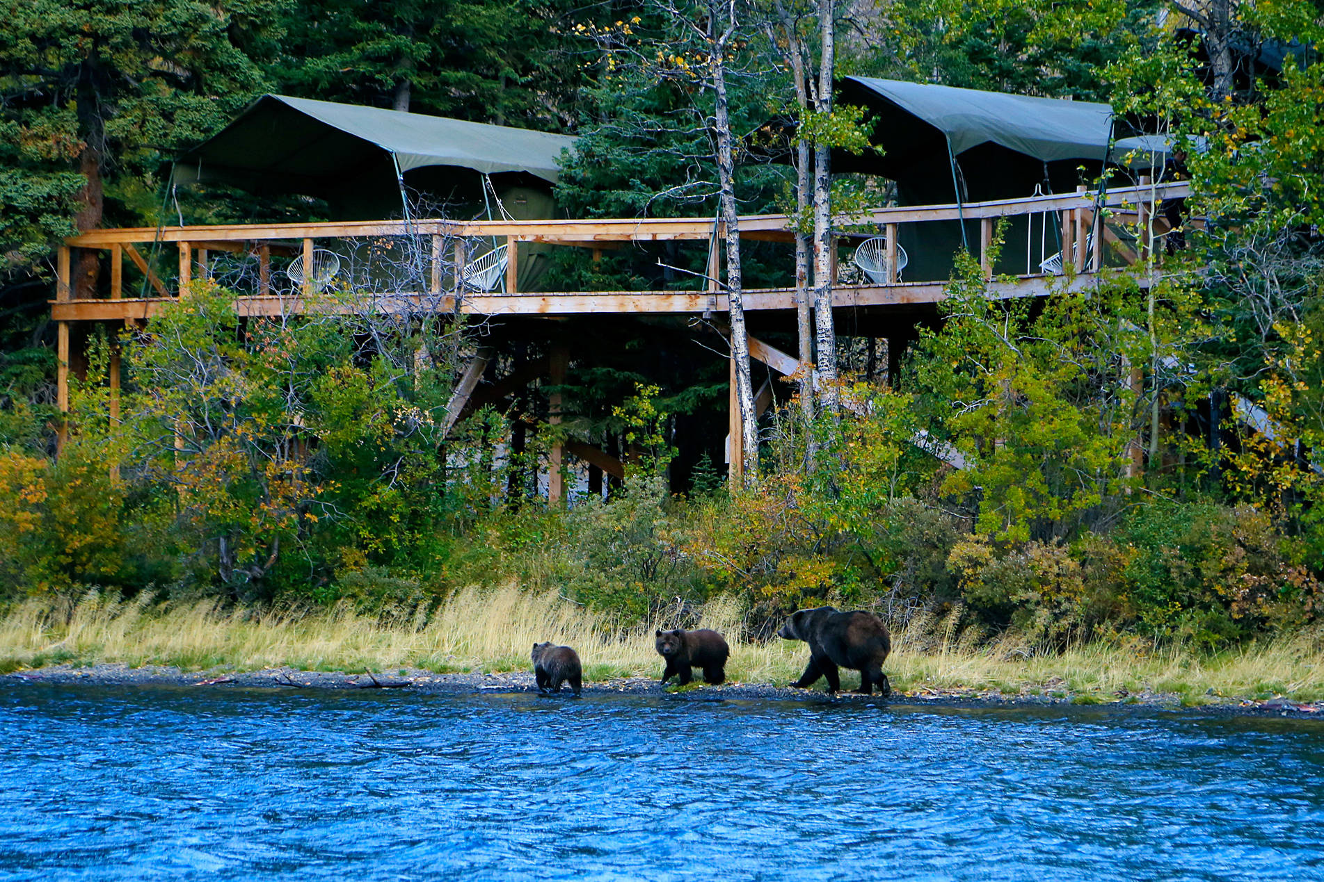 Enter to win an eight-day Rafting & Glamping Adventure with Bear Camp, located near the filming locations of Alone Season 8. Visit landwithoutlimits.com/alone for contest details.