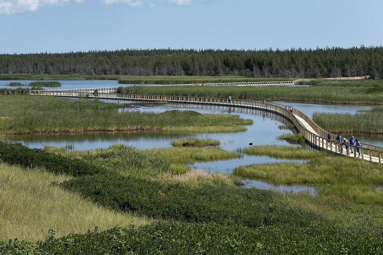 The Greenwich peninsula portion of Prince Edward Island National Park is seen on Tuesday, Aug. 29, 2017. A new report says Canada could reach one-third of its greenhouse gas reduction targets by making better use of its vast forests, prairies and wetlands. THE CANADIAN PRESS/Andrew Vaughan