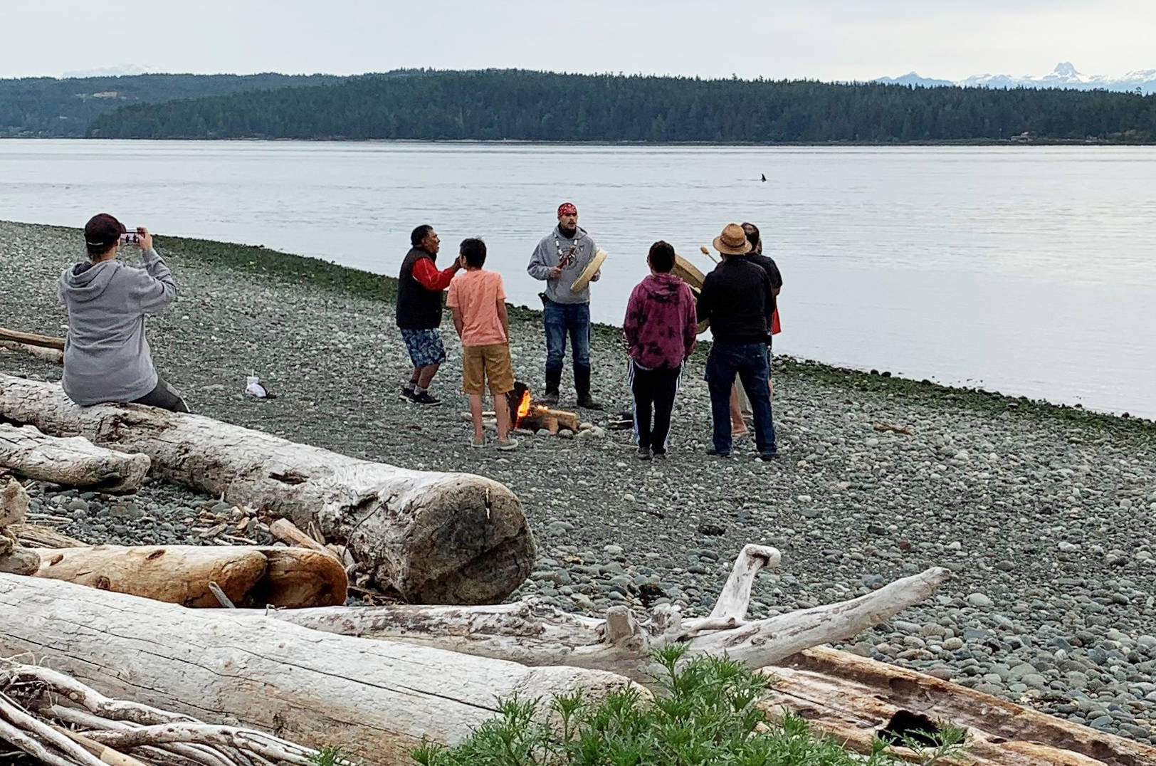 A pod of orcas joined the 7 Generation Steward Society at the Tyee Spit singing in memorial for the 215 children found in Kamloops. Photo courtesy Cory Cliffe