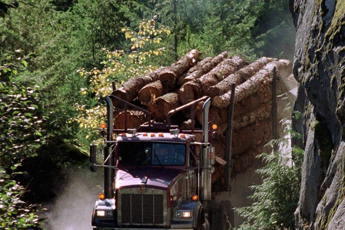 A logging truck carries its load down the Elaho Valley near in Squamish, B.C. in this file photo. THE CANADIAN PRESS/Chuck Stoody