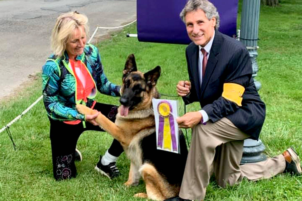 Arabella won the award for best of breed and earned fourth in sheep herding. (Special to The Star)