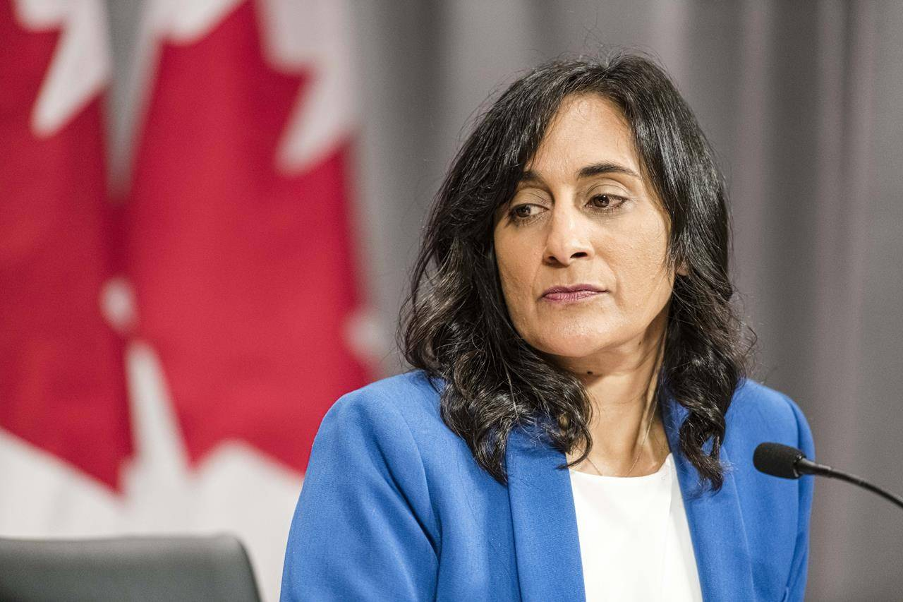 FILE – Anita Anand, Minister of Public Services and Procurement makes an announcement regarding vaccine procurement, in Toronto, on Wed., Aug., 5, 2020. Canada has informed a global vaccine procurement program that it wants to be part of the entire process and the financial commitment to make it official is coming hopefully by the end of the week.THE CANADIAN PRESS/Christopher Katsarov