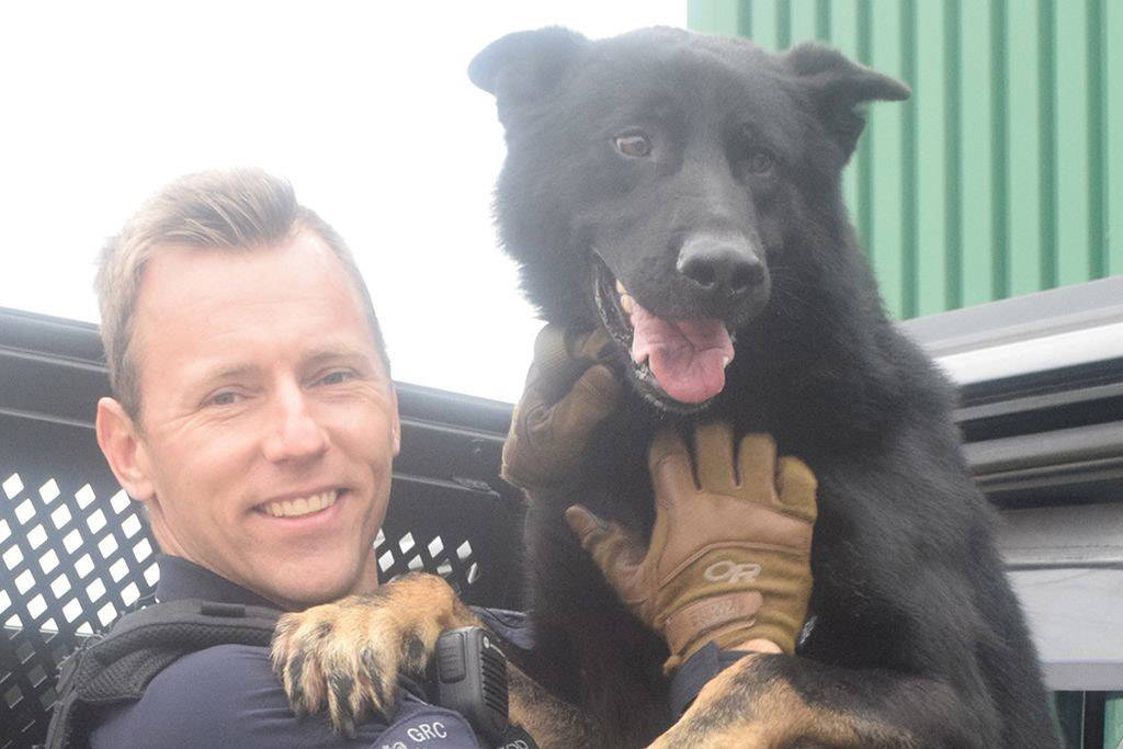 Cpl. Scott MacLeod and Police Service Dog Jago. Jago was killed in the line of duty on Thursday, June 17. (RCMP)