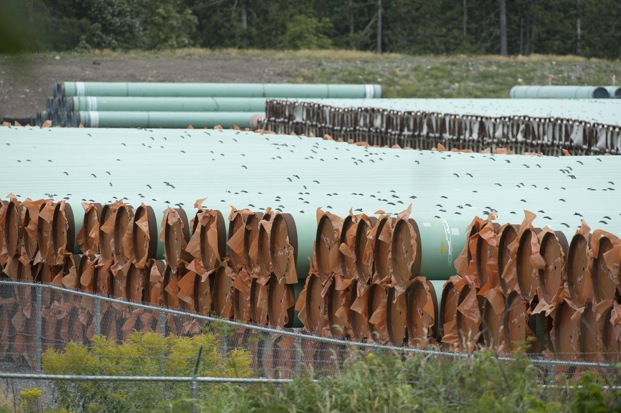 Pipes for the Trans Mountain pipeline project are seen at a storage facility near Hope, B.C., Tuesday, Sept. 1, 2020. A federal regulator says it has lifted a stop work order on tree cutting and grass mowing work along the Trans Mountain pipeline expansion project route. THE CANADIAN PRESS/Jonathan Hayward