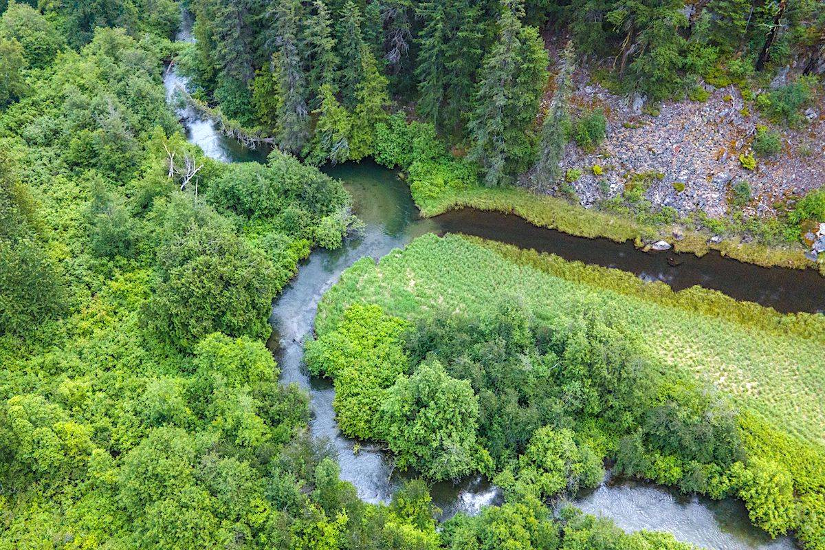 The now-protected land contains freshwater resources with river-critical wildlife habitat. (Nature Conservancy)