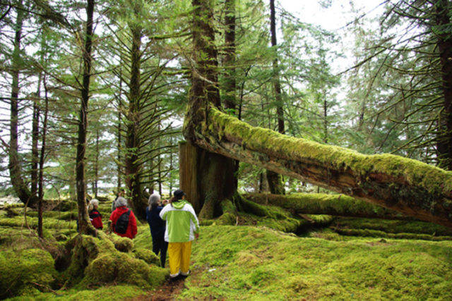 Gwaii Haanas National Park which opened to Haida locals on June 7 will also be open for off-island visitors from July 1. (Parks Canada photo)
