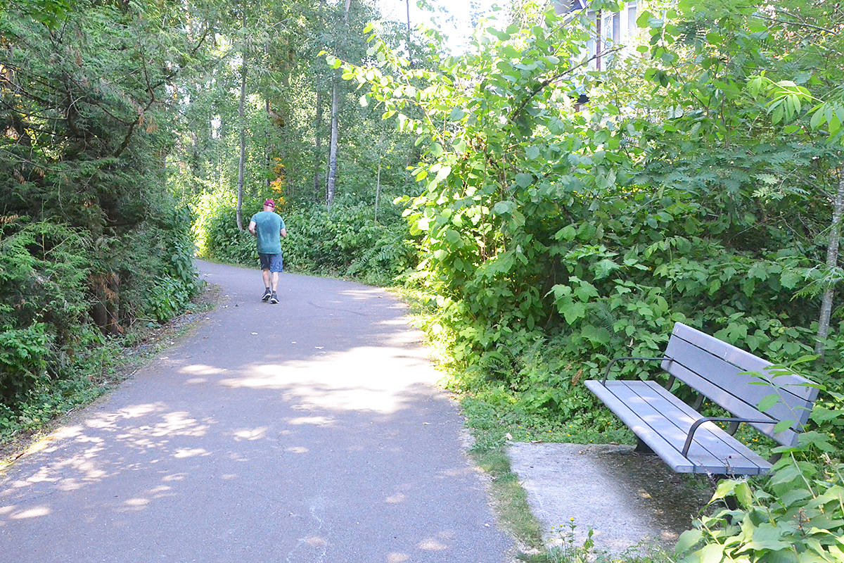 Langley Township's policy is to fight climate change by adding to the tree canopy, including along greenways like this one near 77th Avenue and 208th Street. (Matthew Claxton/Langley Advance Times)
