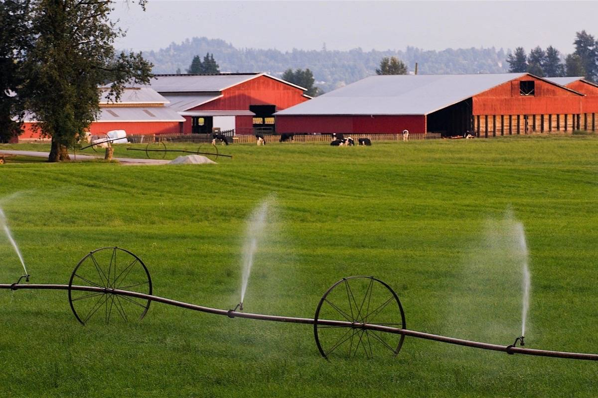 Agriculture depends on irrigation in many parts of B.C., and licences are required for using groundwater sources such as wells for agricultural or industrial use. (B.C. government photo)