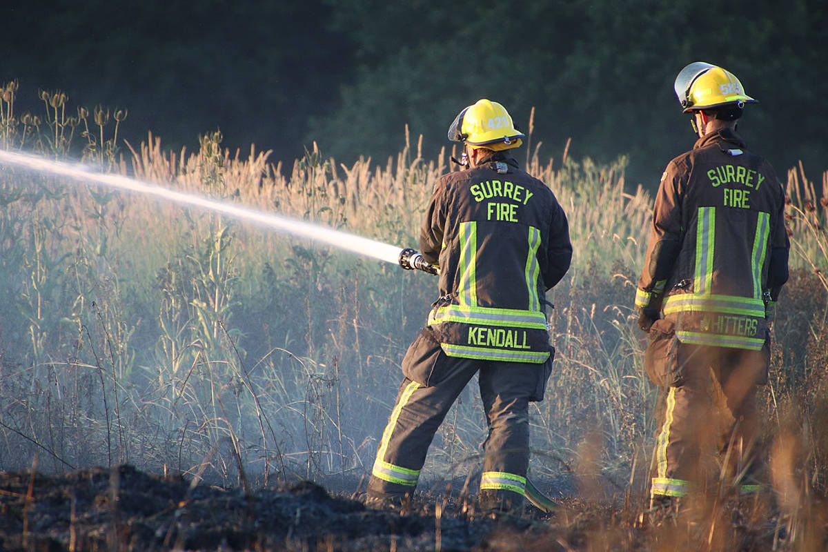 Surrey firefighters were on scene of a grass fire in Cloverdale Friday night along 184th Street. (Shane MacKichan/Special to Black Press)