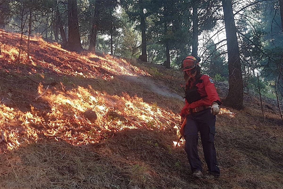 B.C. forest firefighter lights a backburn to remove fuel from an area to keep a wildfire from spreading, 2017. (B.C. Wildfire Service)