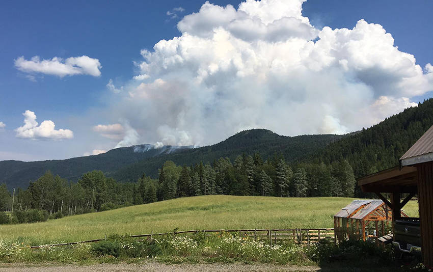 The Canim Lake fire grew to 700 hectares overnight Sunday, and has prompted an expanded evacuation alert. (Martina Dopf - 100 Mile Free Press)