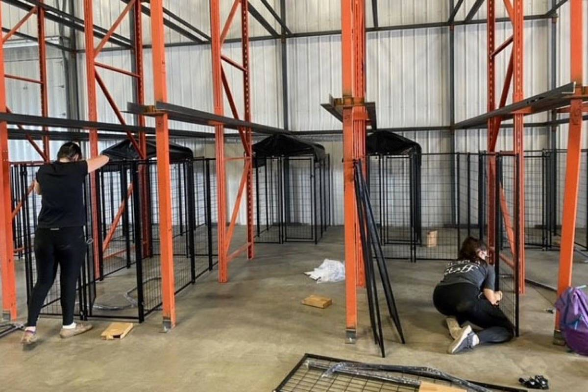 SPCA staff setting up a temporary Animal Evacuation Centre in Kamloops to house animals displaced from the fire in Lytton. (Photo credit: BC SPCA)