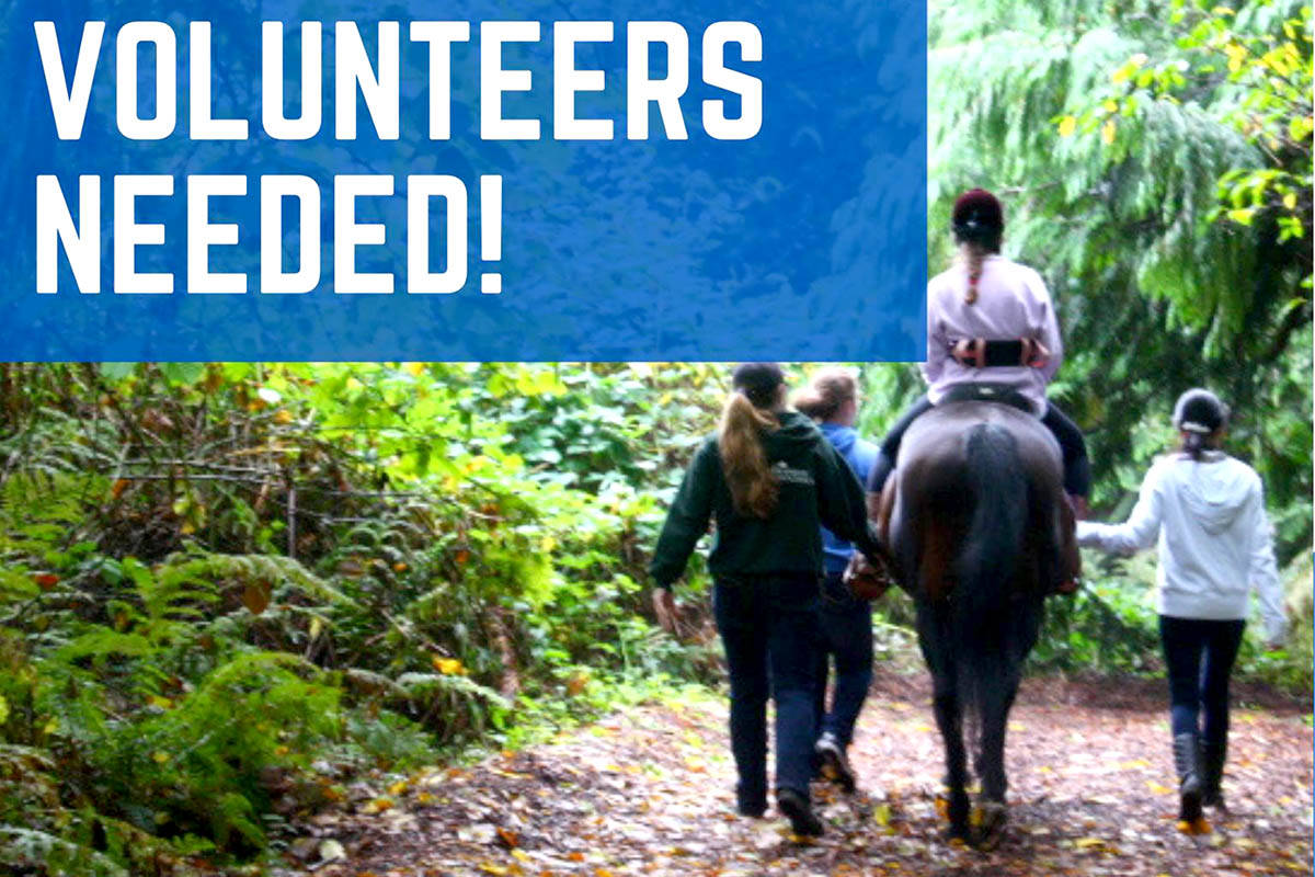 Valley Therapeutic Equestrian Association (VTEA) in Aldergrove is looking for volunteers, new and old, to lend a hand. (Special to The Star)