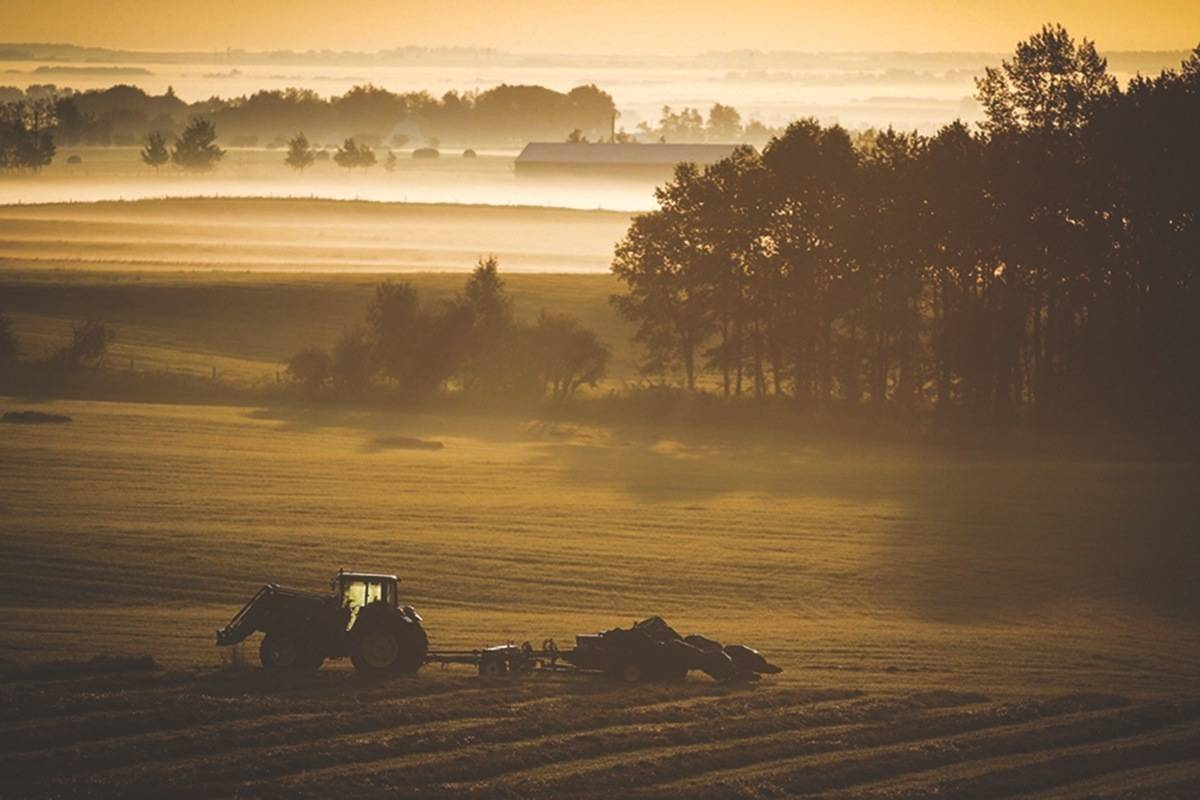 A farm tractor and baler sit in a hay field on a misty morning, ready for a day's harvest. THE CANADIAN PRESS/Jeff McIntosh