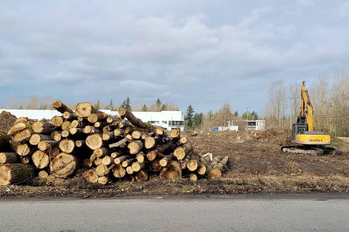 The City of Surrey says Campbell Heights saw more than $72 million in new construction and improvements in the first five months of 2021. (Nick Greenizan file photo)