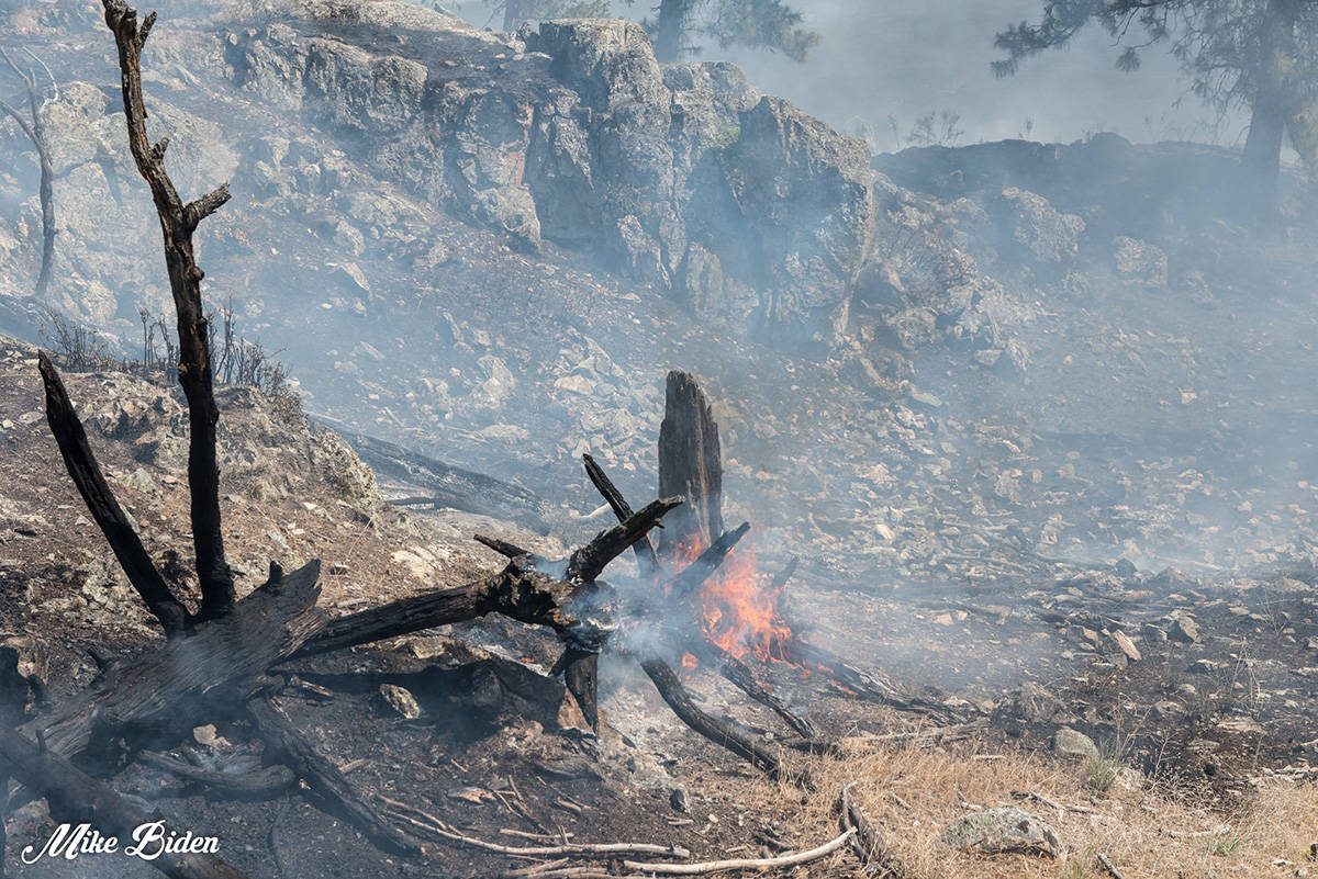Photos of the scorched earth of the Thomas Creek fire. (Mike Biden photos)