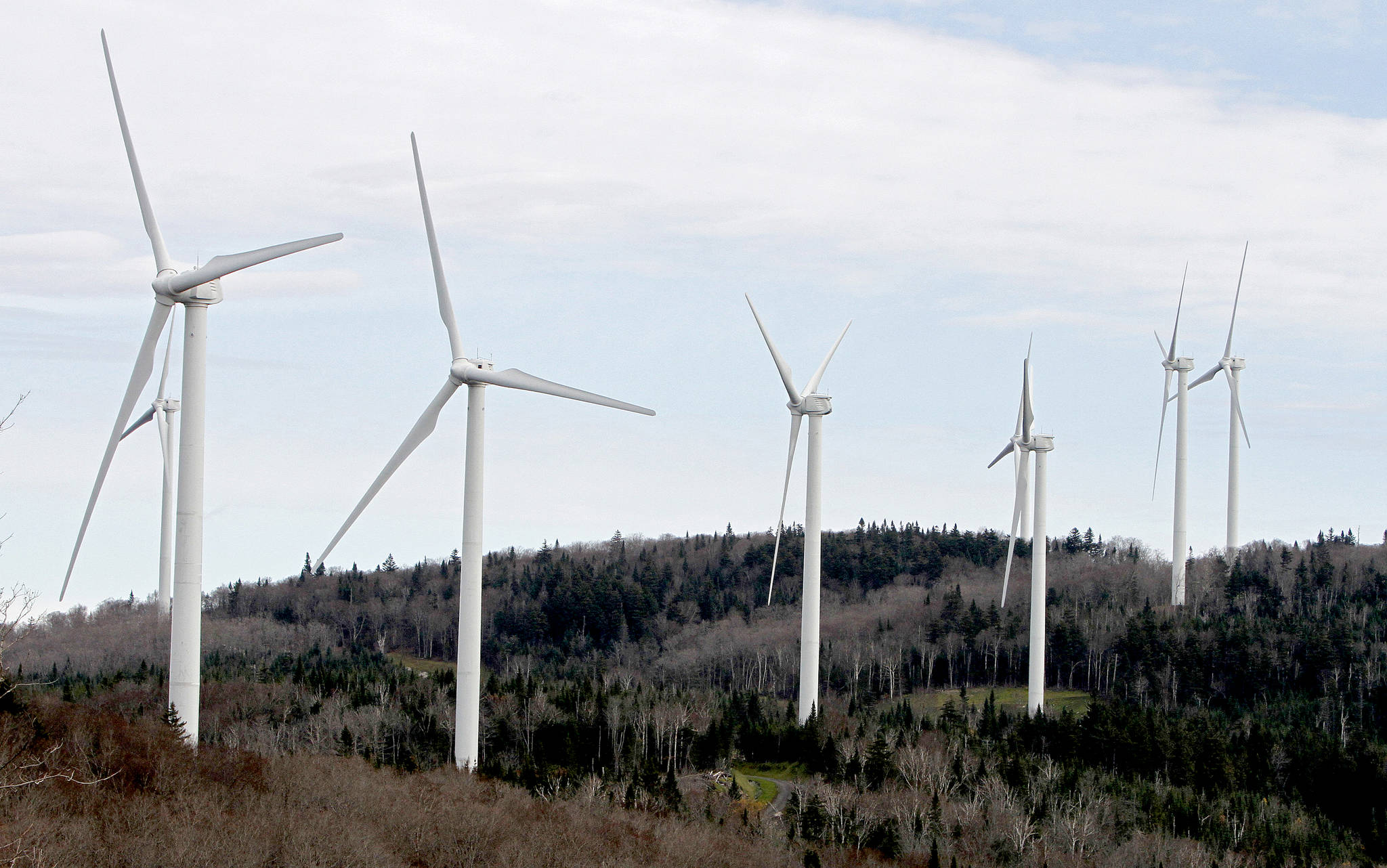 FILE- In this Oct. 26, 2011 file photo, wind turbines line the hillside at First Wind's project in Sheffield, Vt. Government officials in Vermont, Canada and Australia have dismissed concerns about the health effects of noise from wind power turbines, but don't tell that to people living near them. Now a Vermont home abandoned by a family who said they were made ill by nearby turbines will be used for sound-monitoring research. (AP Photo/Toby Talbot, File)