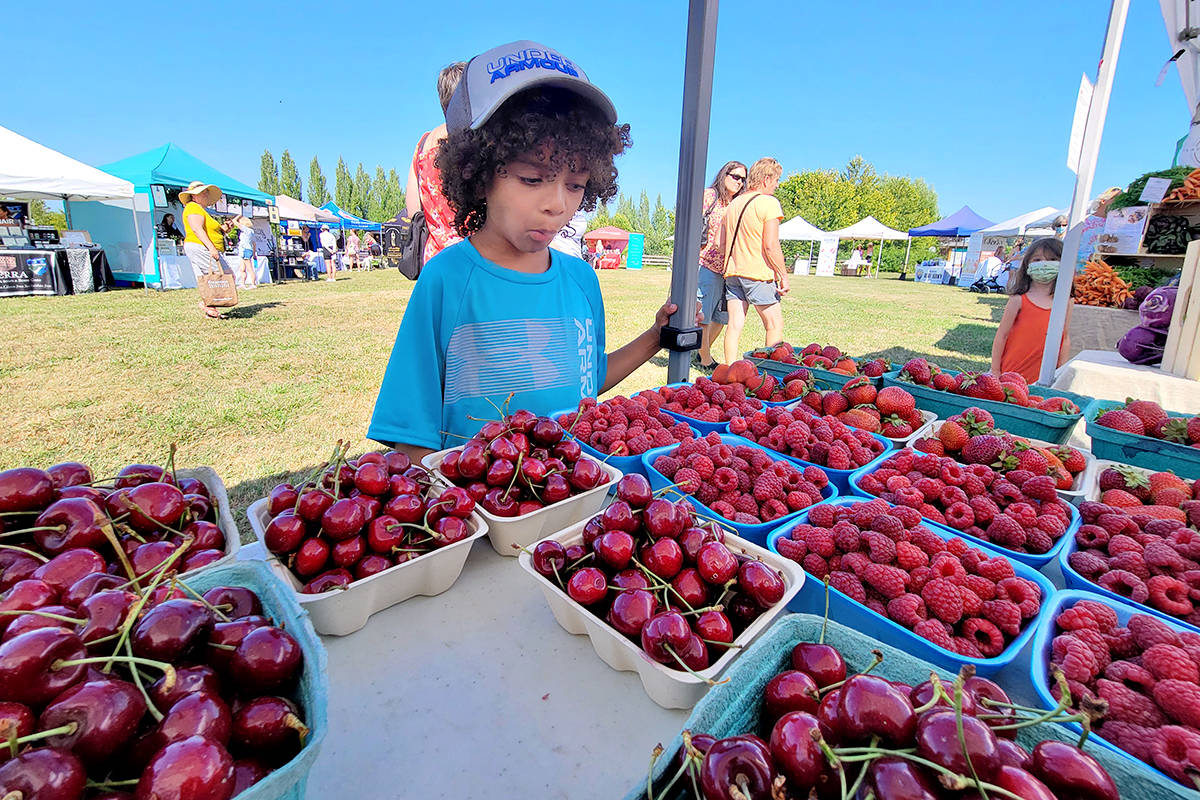 Willowbrook resident Khalil Powell, 5, tried to decide which type of berry he liked best at the Langley Community Farmers Market on Wednesday, July 14. (Dan Ferguson/Langley Advance Times)