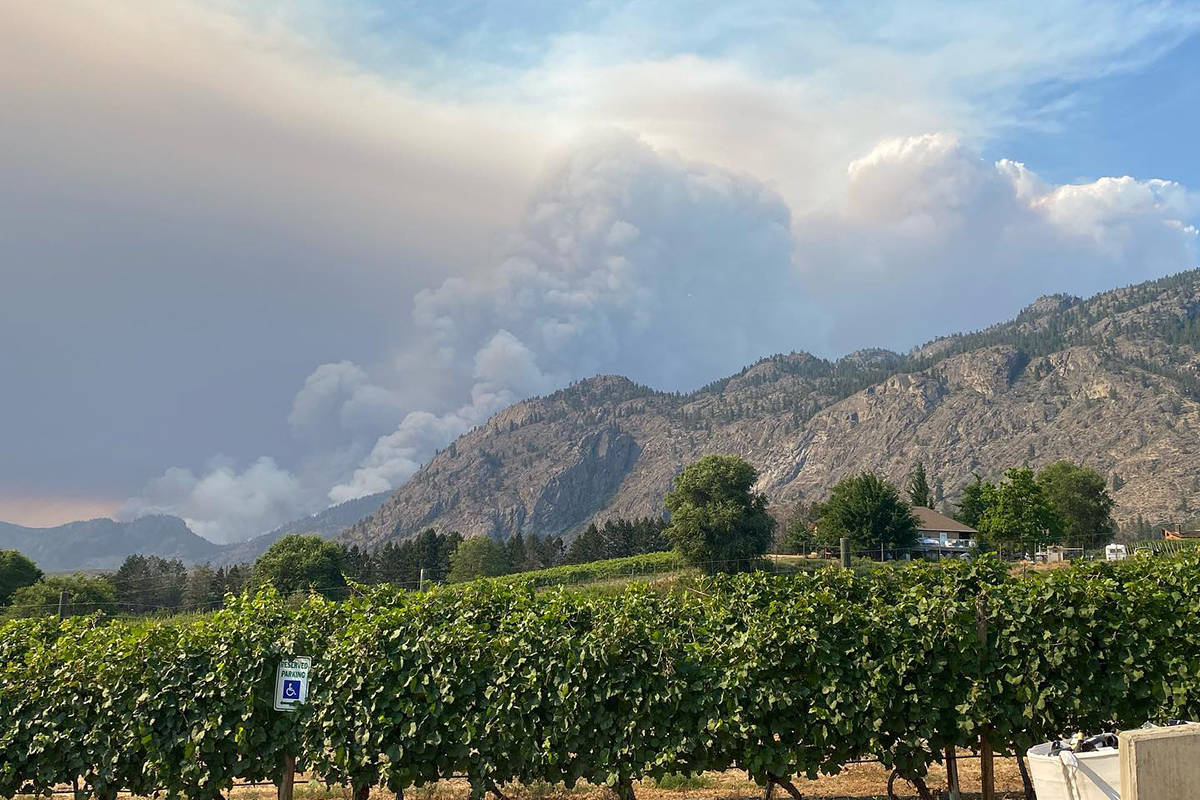 Adega's winery on 45th in Osoyoos has closed until further notice due to the fast moving Inkaneep Creek wildfire. (Adega's Facebook)