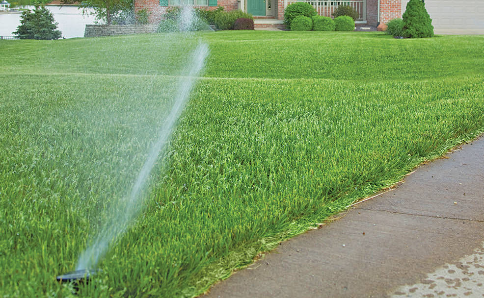 Langley Township is asking residents to skip the sprinklers and let their lawn go golden to conserve water this summer. (Black Press Media files)