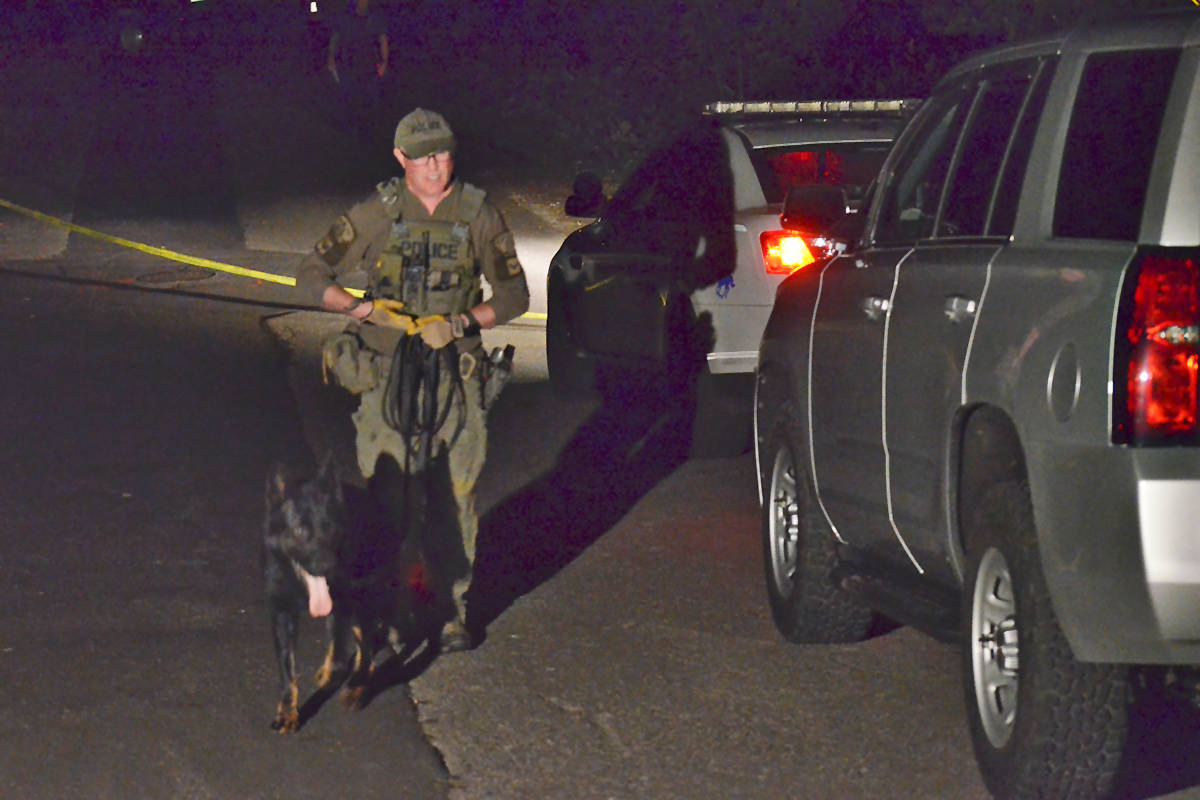 IHIT along with Langley RCMP and the dog unit were on scene Tuesday evening. (Heather Colpitts/Langley Advance Times)