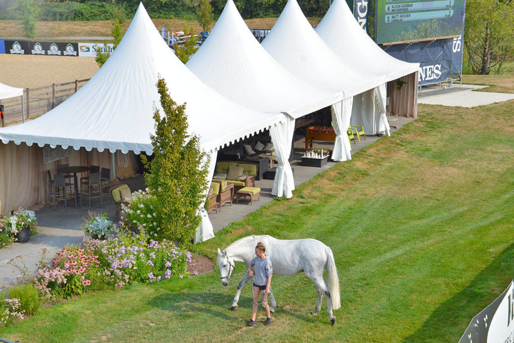 Equestrian park sole Langley business to get B.C. COVID relief funds - Langley Advance Times