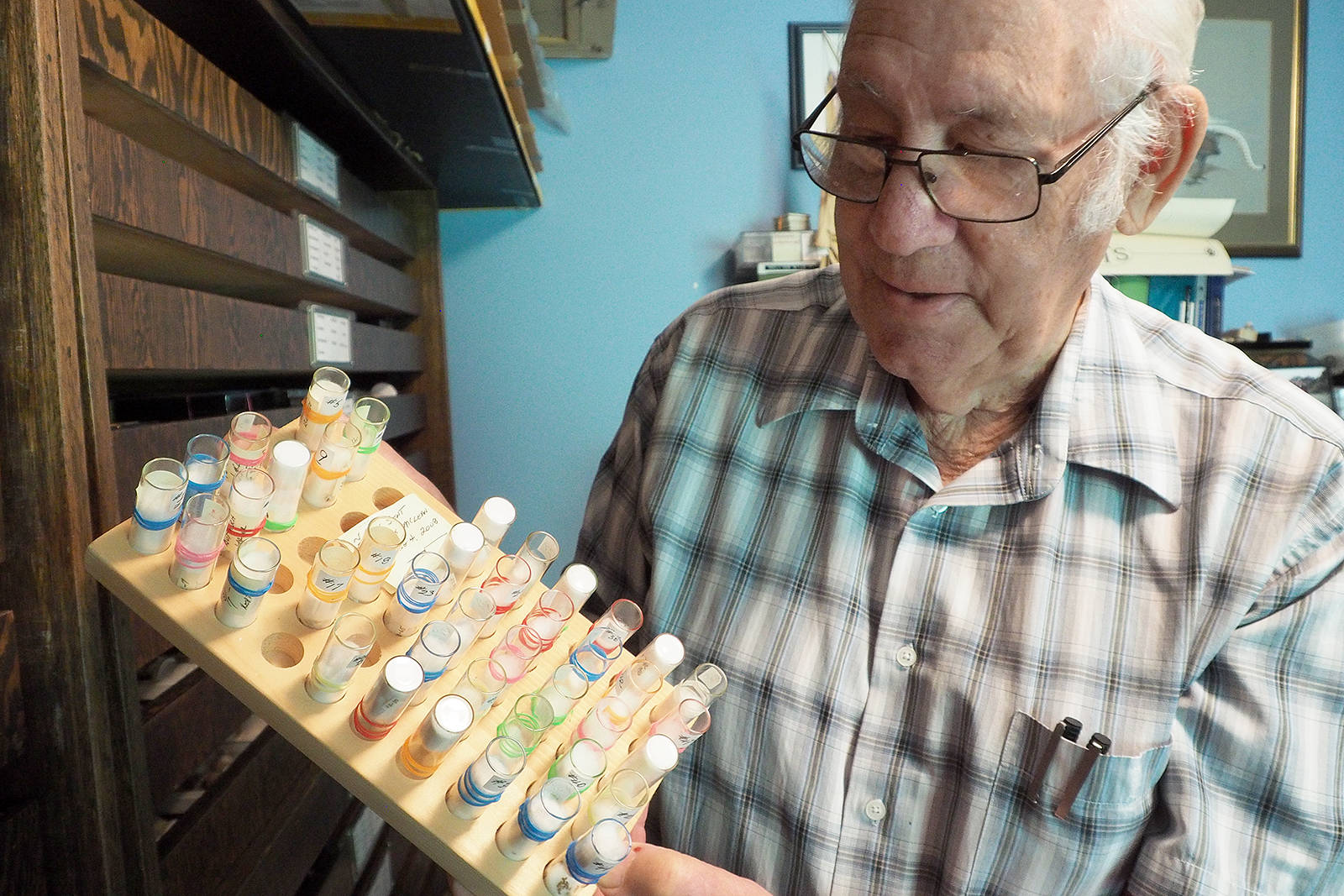BIll Merilees, a retired B.C. Parks regional information officer, spent 50 years collecting mollusk specimens from the B.C. and Washington State coasts. Many of the tiny snails have yet to be identified by scientists. The classification work will likely be continued by students doing research projects at the University of British Columbia. (Chris Bush/News Bulletin)
