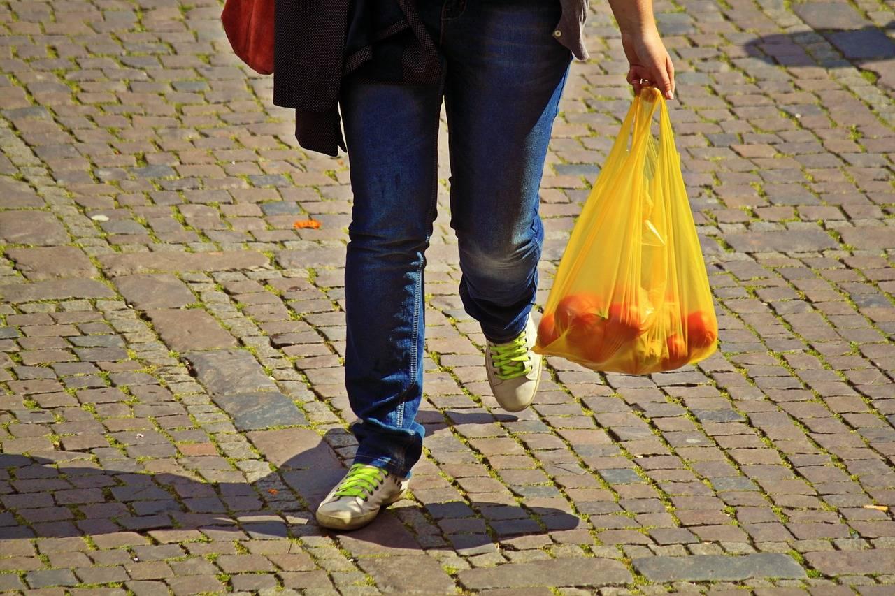 Esquimalt, Nanaimo, Richmond, Rossland, Saanich, Surrey, Tofino, Ucluelet and Victoria all have plastic bag bans. (Pixabay.com)