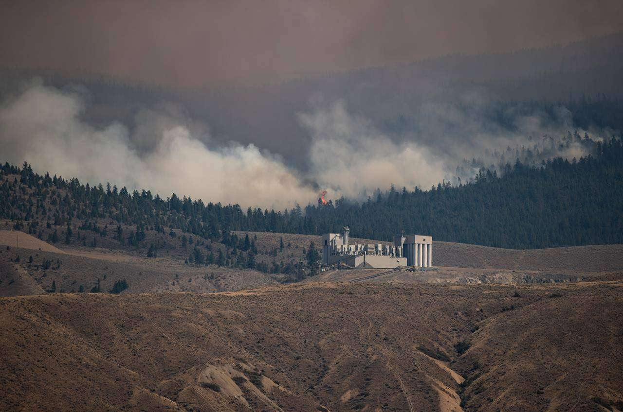 A tree candles as the Tremont Creek wildfire burns behind the IG Machine & Fibers roofing granule plant, where rock is crushed and coloured and then shipped elsewhere to create roofing shingles, in Ashcroft, B.C., on Friday, July 16, 2021. THE CANADIAN PRESS/Darryl Dyck