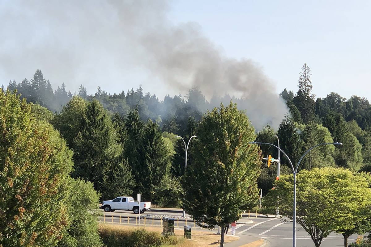 City of Langley firefighters responded to a bush fire at the Nicomekl floodplain on July 23, 2021. (Mike Baker/Special to Langley Advance Times)