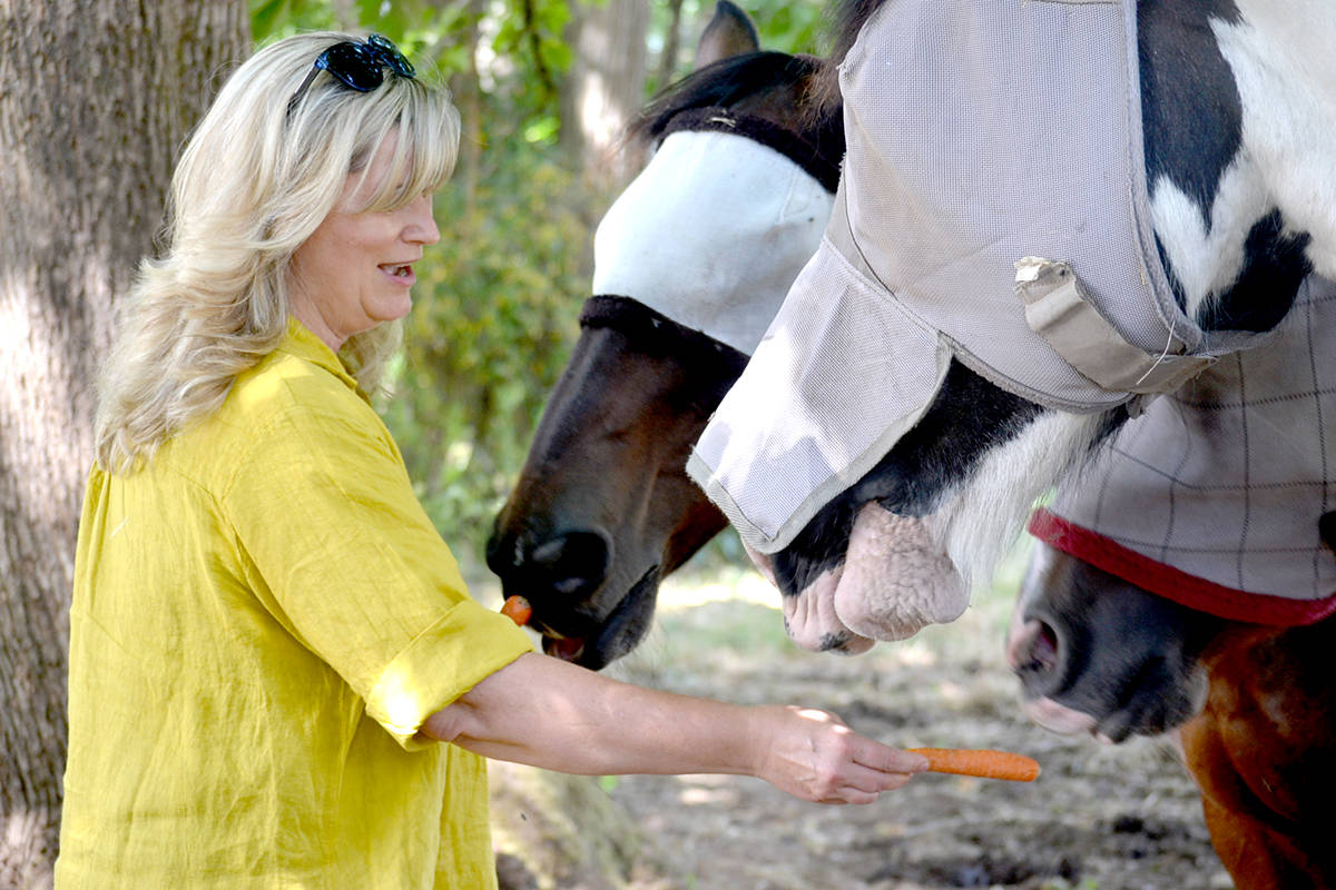 Valley Therapeutic Equestrian Association president Lynn Moseley gives the non-profit's horses a treat. (Ryan Uytdewilligen/Aldergrove Star)