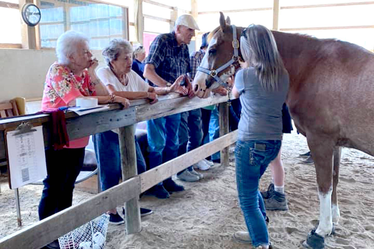 Seniors from Mayfair Terrace Retirement Residence were invited to meet the horses up close at Valley Therapeutic Equestrian Association. (Special to The Star)