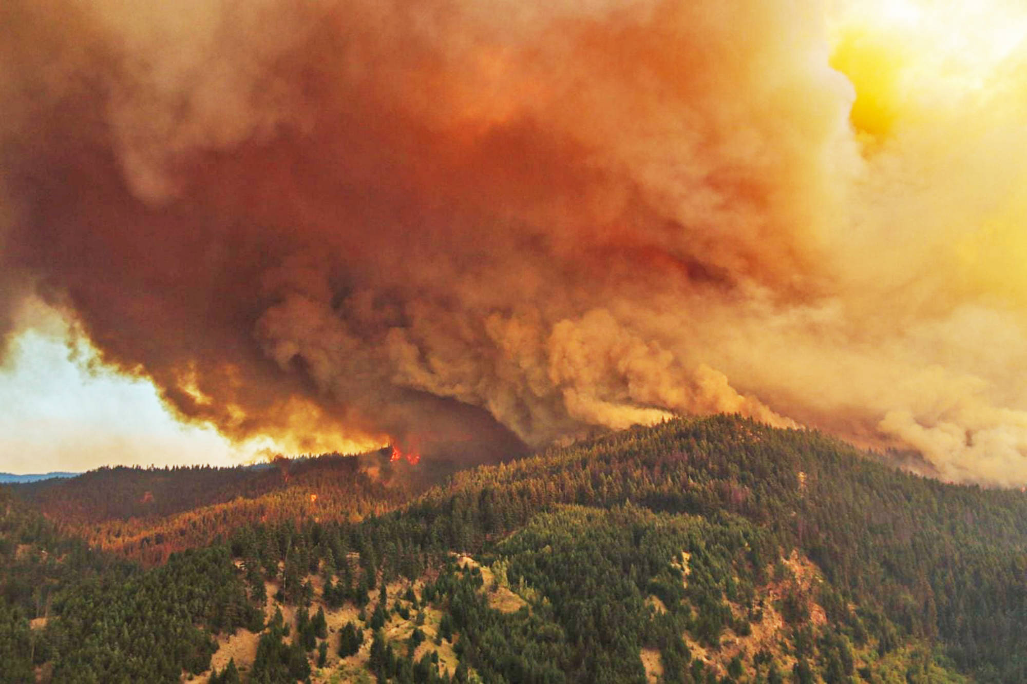 As of Thursday, Aug. 5, the White Rock Lake wildfire was estimated to be 32,500 hectares in size. On Aug. 4, in response to the fire, an evacuation order was issued for Falkland in Electoral Area D of the Columbia Shuswap Regional District. (BC Wildfire Service photo)