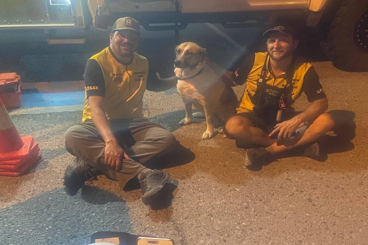 Central Okanagan Search and Rescue members with Smokey the dog on Aug. 6. (Central Okanagan Search and Rescue/Facebook)