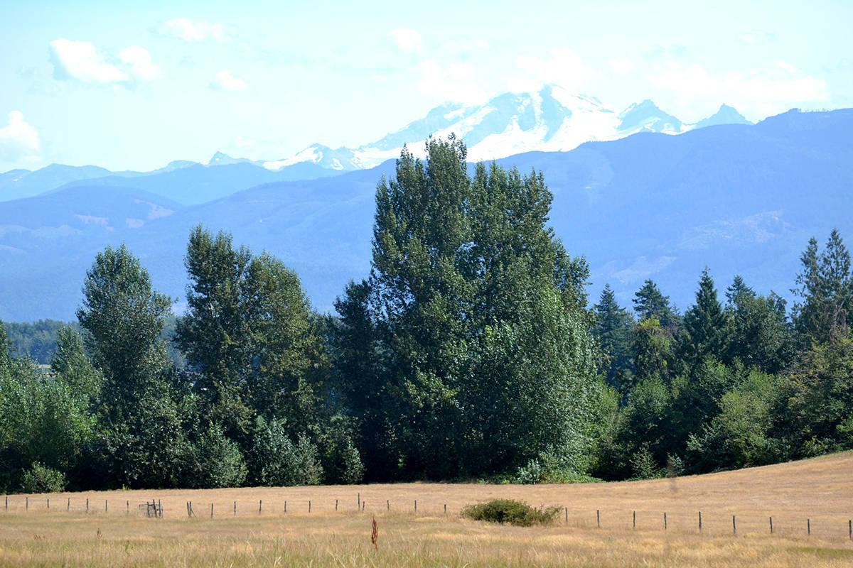 Mt. Baker in Washington was perfectly visible from Aldergrove Regional Park last week. (Ryan Uytdewilligen/Aldergrove Star)