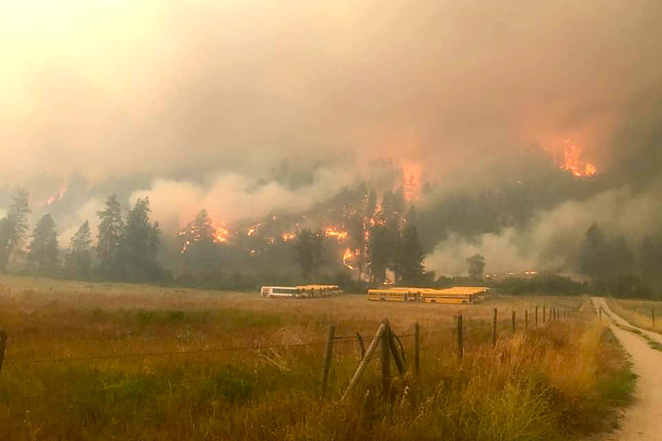 The White Rock Lake wildfire has come down to Westside Road near Vernon, as pictured Monday, Aug. 16. (Contributed)
