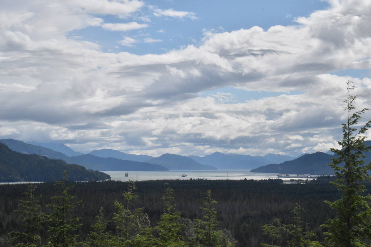 Ships seen here in the Douglas Channel, Kitimat. The captain of a Norwegian cargo ship MV Indiana, trapped at RTA Terminal B dock since July 17, is calling on the the union and Rio Tinto to let it be refuelled. (Binny Paul/Terrace Standard)