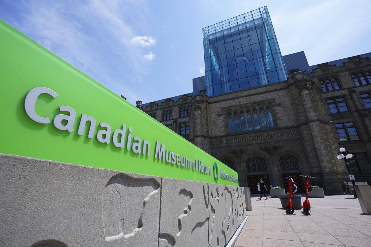 People visit the Canadian Museum of Nature during the COVID-19 pandemic in Ottawa on Friday, July 16, 2021. THE CANADIAN PRESS/Sean Kilpatrick